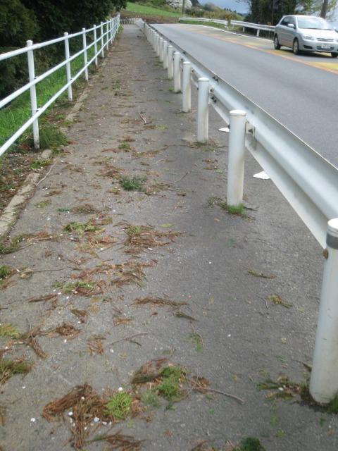 国道一号線箱根峠へむかい途中の歩道の様子。