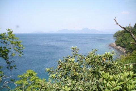 大瀬付近からの眺め