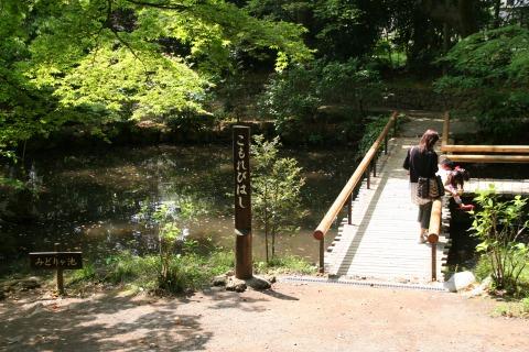 楽寿園園内風景2