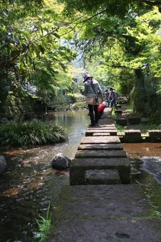 源平川飛び石