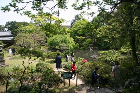隆泉苑の様子