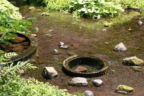 遊歩道脇の湧水ポイント。