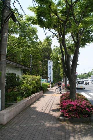 柿田川入り口。