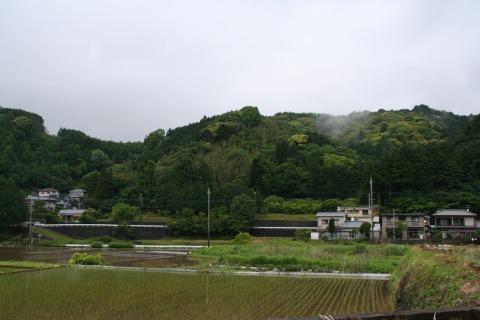 田植え後の風景