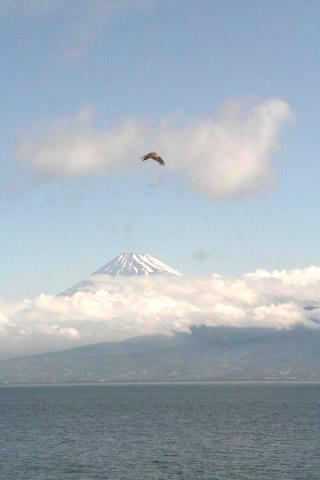大瀬からの富士山