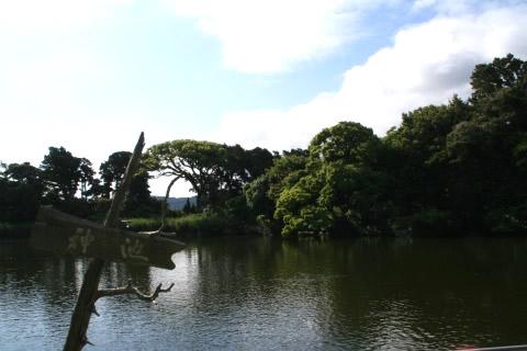 大瀬の神池