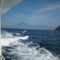 高速船ホワイトマリン