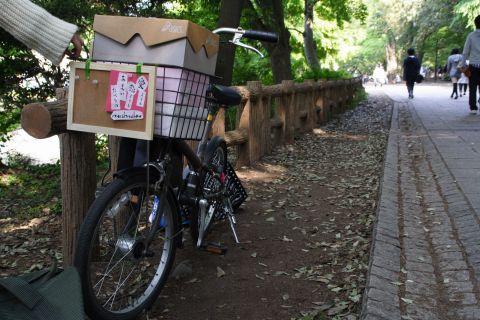 マシュマロの自転車販売