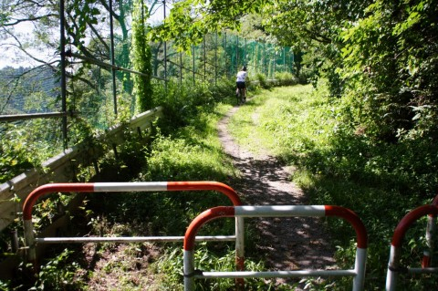 香貫山の道(未舗装路)
